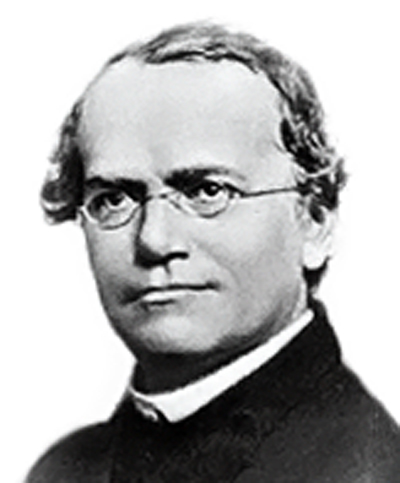 Interesting Facts About Gregor Mendel