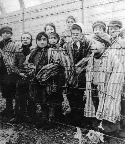 Treatment In Holocaust Concentration Camps